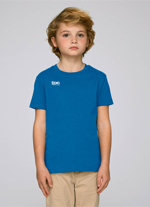 JIAPP51B___IPPON_GEAR_Team_T_Shirt_Basic_K_blau.jpg